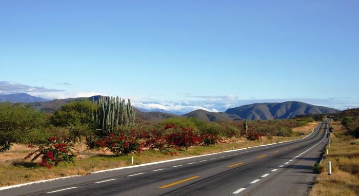 Palomas Mexico